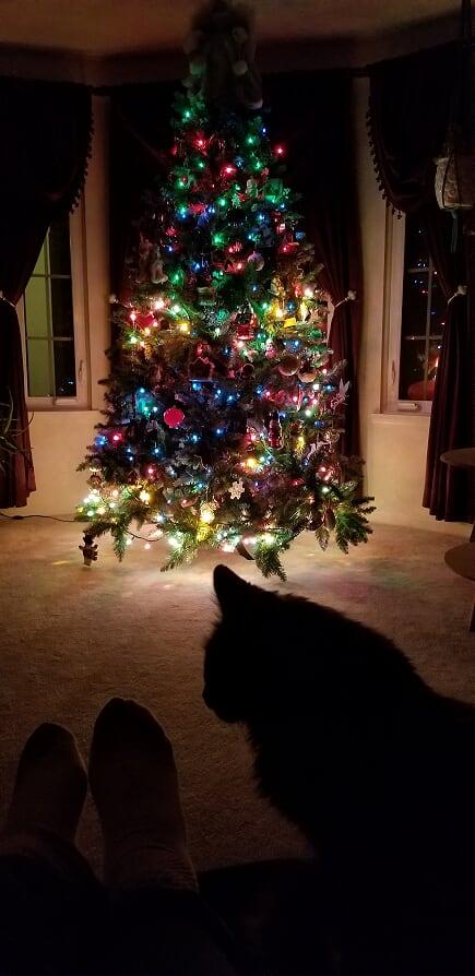 Christmas 2019-christmas-tree.jpg