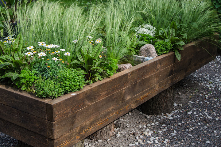 Creative Ideas for a DIY Container Garden