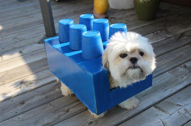 Lego Dogo