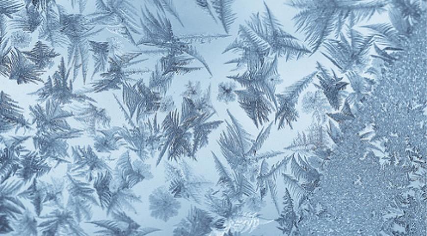 icefeathers