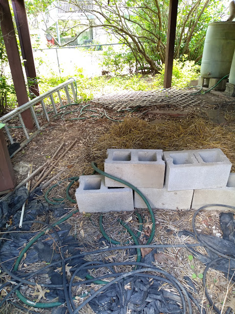 2020 Gardening Thread-img_20200517_125135276.jpg