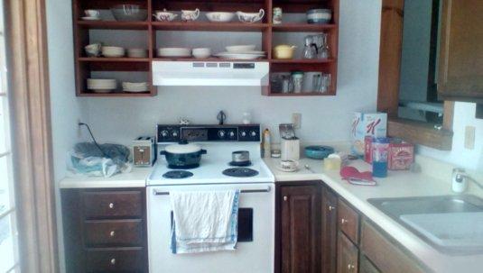 Starting from scratch-kitchen.jpg