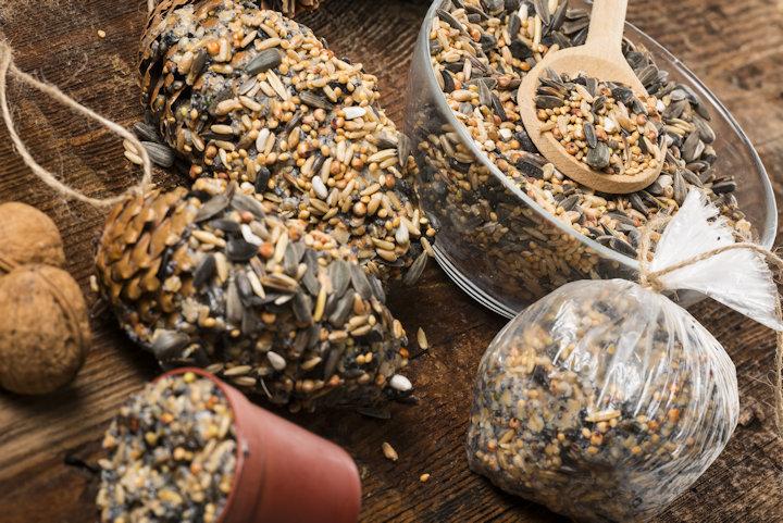 Have you ever made your own bird feeder?-pineconefeeder.jpg