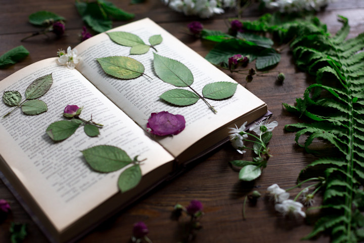 Kid-Friendly Crafts Using Pressed Flowers