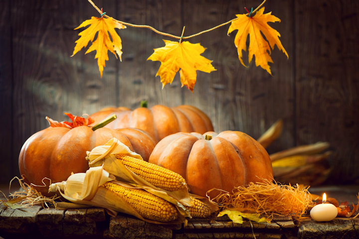 How to Host a Frugal Thanksgiving