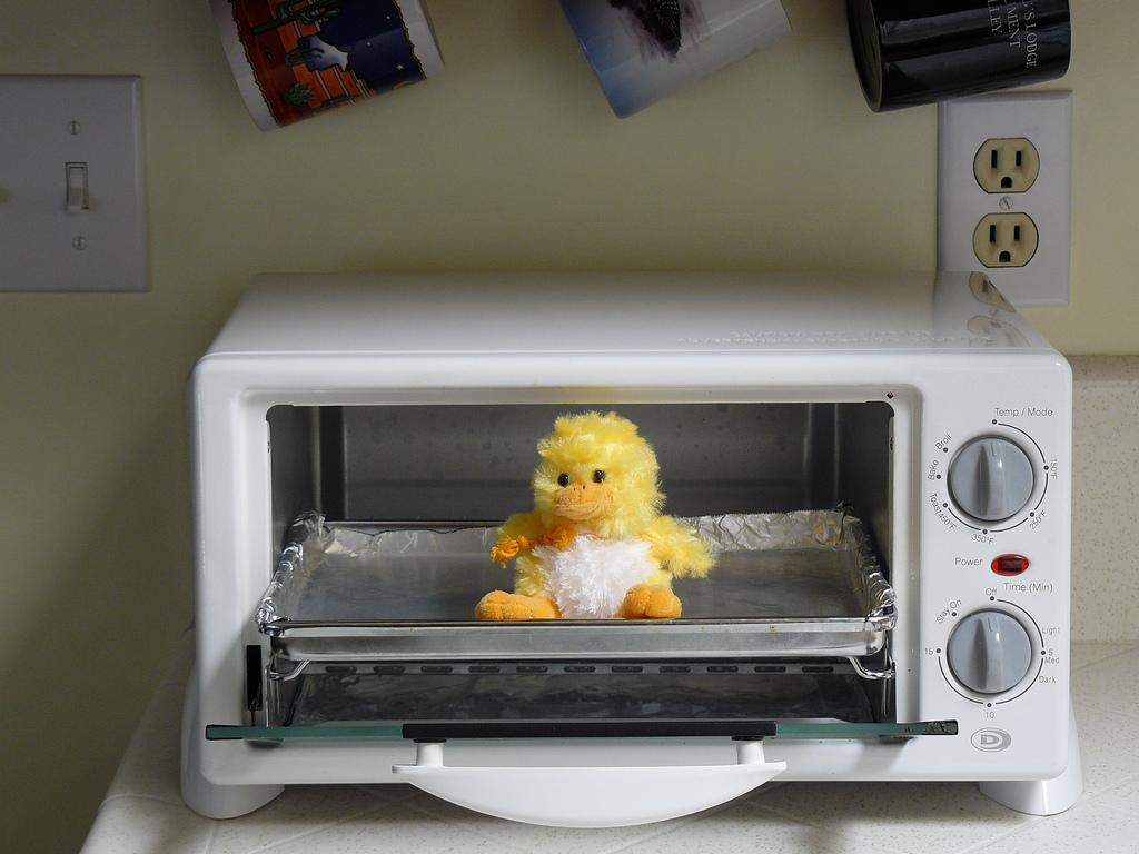 toasterovenbird