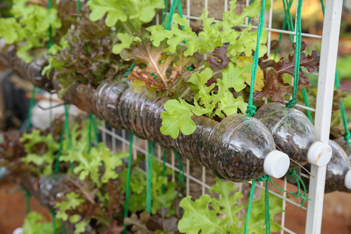 garden materials. Materials Suitable For Building A DIY Vertical Garden